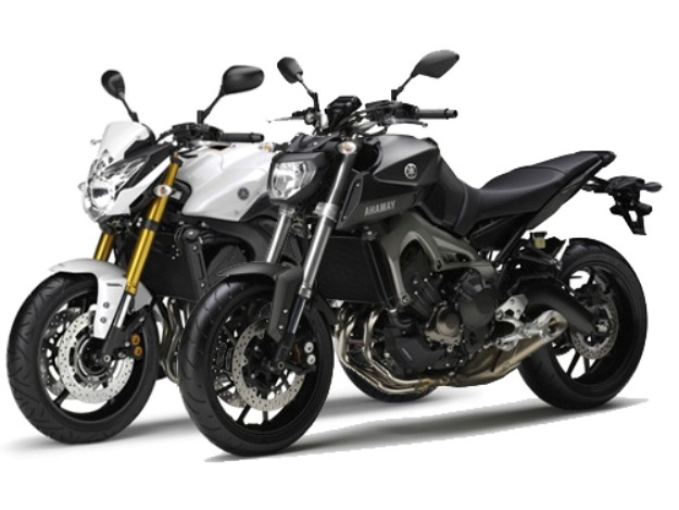 Yamaha FZ8 will continue its career at the sides of the MT-09