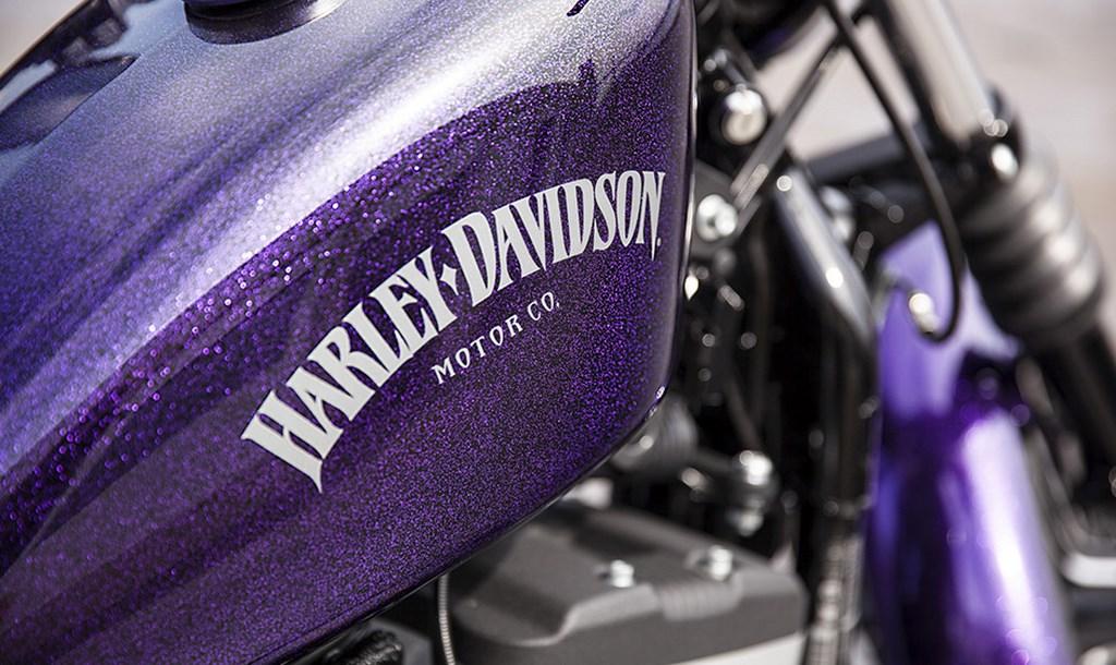 Harley-Davidson Sportster  Iron 883 Wallpaper