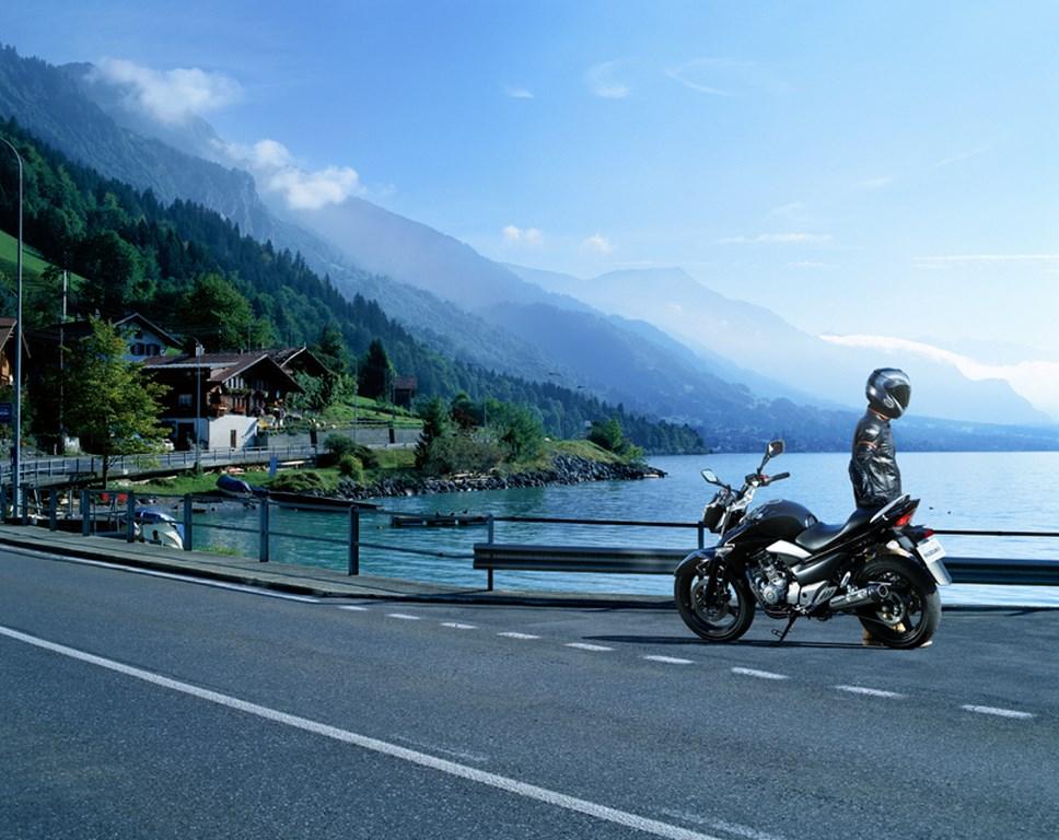 Suzuki Inazuma GW250 Picture (968 × 768)