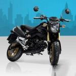 HondaMSX125 Perfect Motorcycle