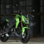 Kawasaki Z125 DNA Pocket-Bike 2016