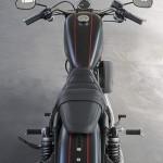 Harley-DavidsonCustom Roadster with Naked Design
